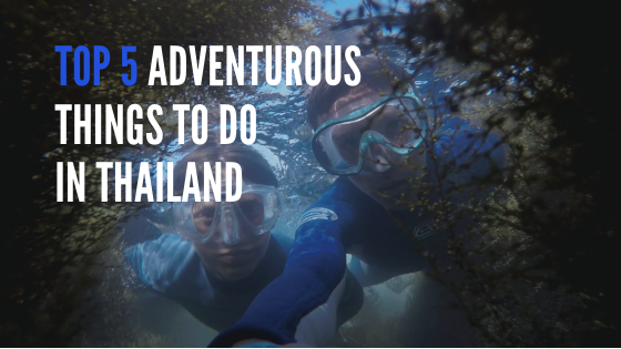 Fun Activities to do in Thailand during your vacation
