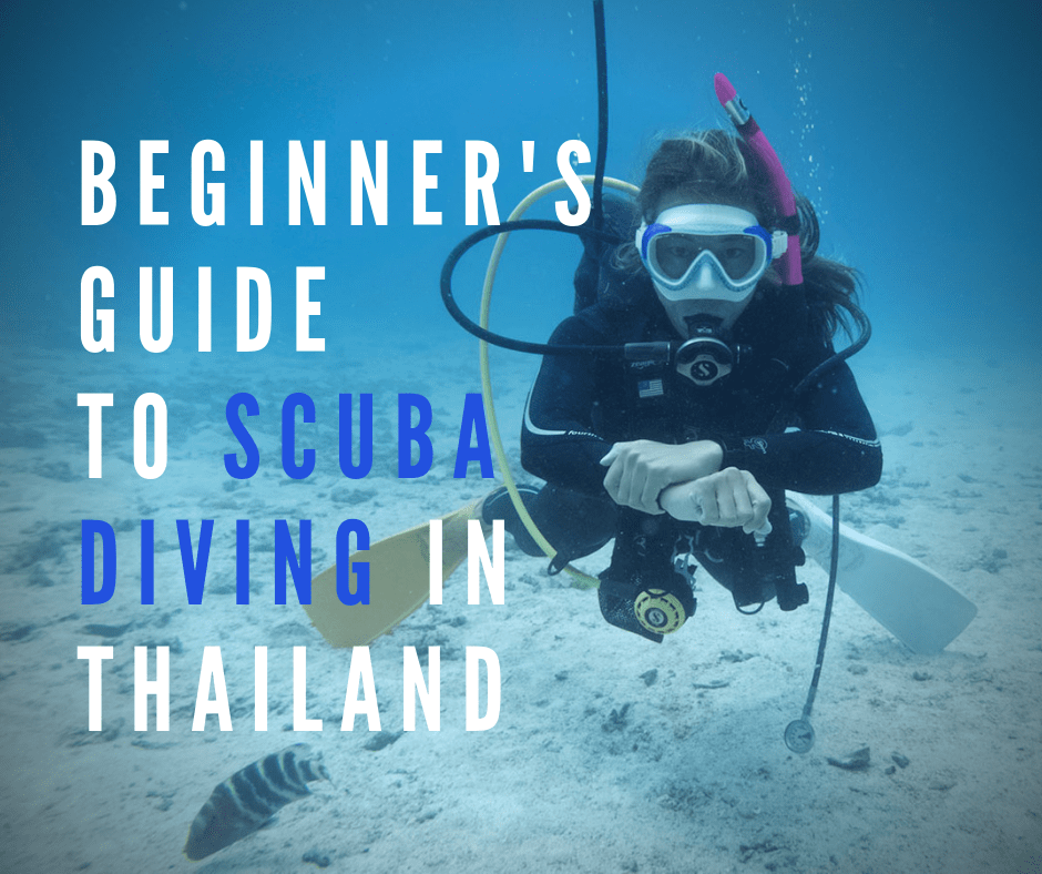 Ultimate beginner's guide to PADI diving and scuba diving in Thailand