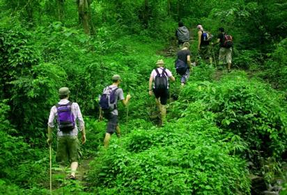 trekking in the jungles of Thailand